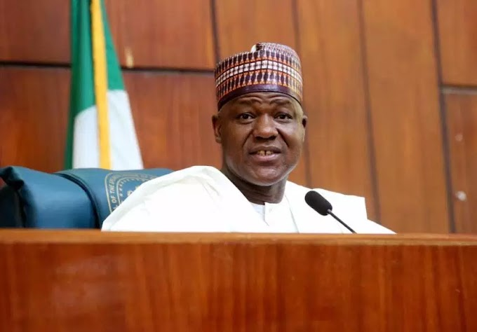 Buhari's shoot-on-sight order call for extra-judicial killings -Dogara