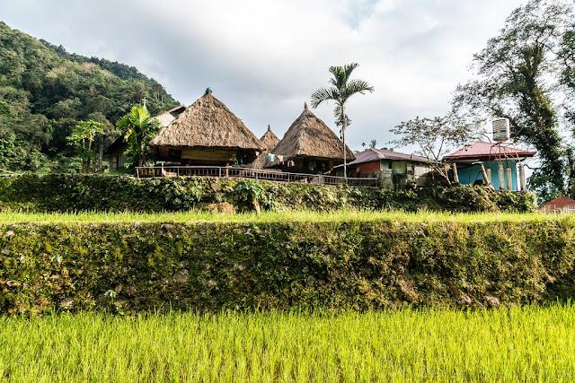 Banga-An-Ifugao-Luçon-Philippines