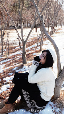 winter in nami island south korea