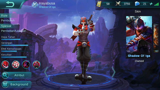 Hero Hayabusa ( Shadow of Iga ) High AD Build/ Set up Gear