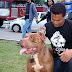 3º Encontro de Cães de Porto Velho