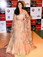 Katrina Kaif in Sizzling Designer Gown Walk the Red Carpet of Zee Awards 2017i ~  Exclusive Galleries 028.jpg