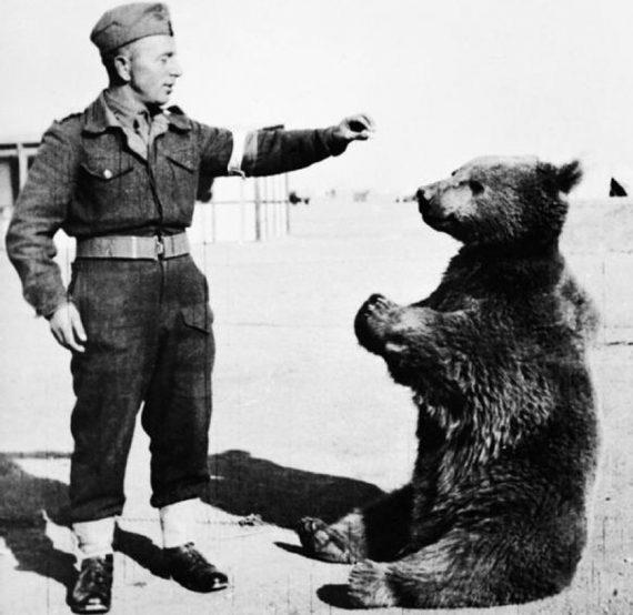 Kopral Wojtek - Beruang Pahlawan Perang Dunia Kedua