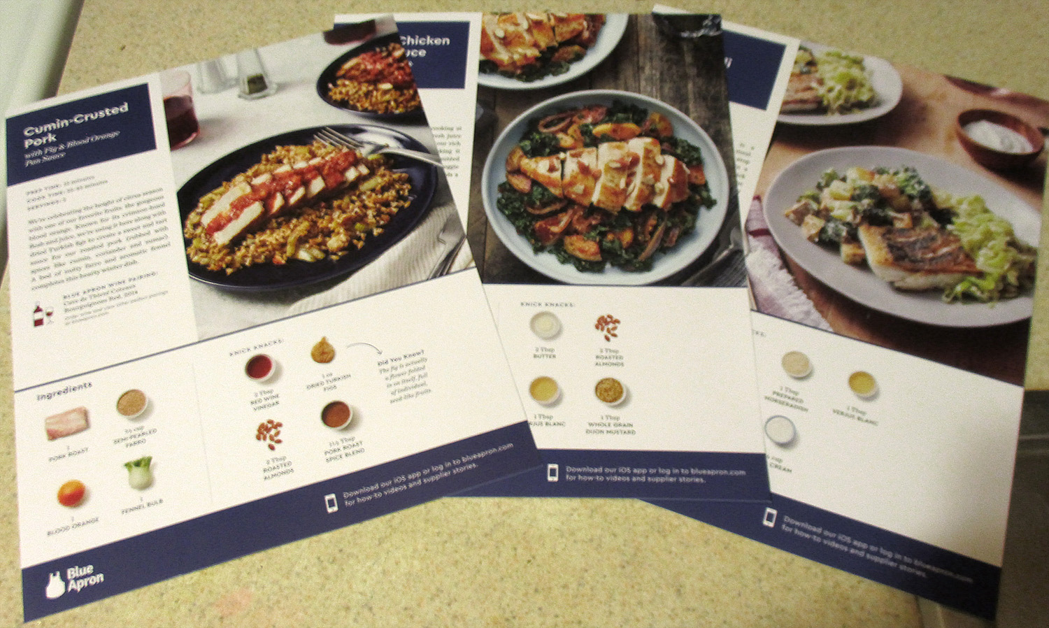 Subscription boxes blue apron south eats north recipe cards forumfinder Images