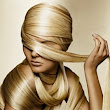 Amazing Facts About Your Hair | Guiding Instincts