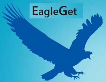 تحميل برنامج  EagleGet 2018 لتحميل الملفات من الانترنت