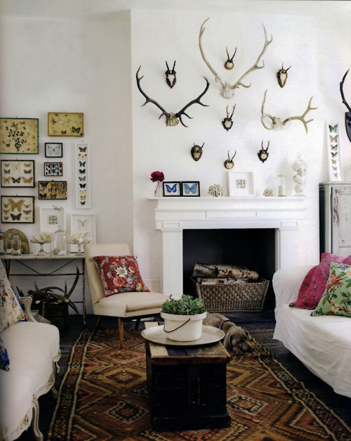 A LITTLE BIT OF LACQUER Home Decor Antlers