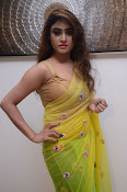 Sony Charista sizzling look in saree-thumbnail-19