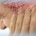 Hipersensibilidad a los estímulos sensoriales en Fibromialgia