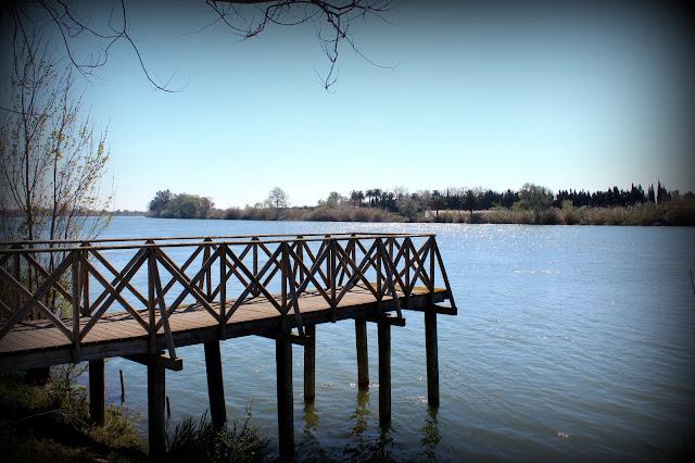 Río Ebro a su paso por Deltebre