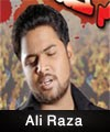 http://www.humaliwalayazadar.com/2015/04/ali-raza-nohay-2012-to-2016.html