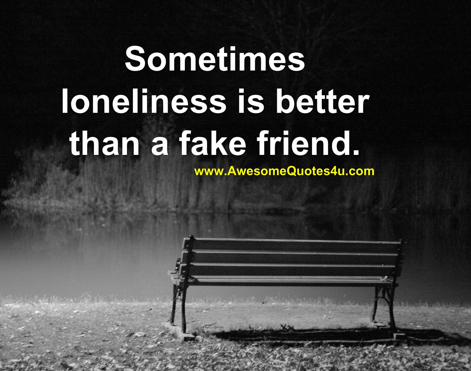 Awesome Quotes: Sometimes loneliness is better than a fake ...