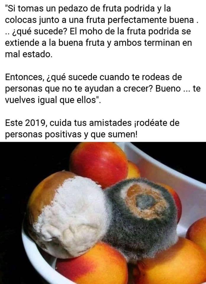 fruta podrida 2019