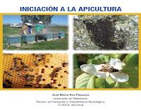 iniciación-a-la-apicultura