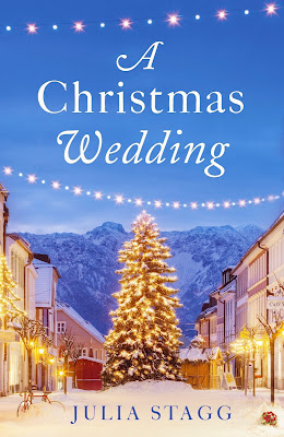 French Village Diaries book review A Christmas Wedding Julia Stagg Fogas Chronicles Pyrenees France