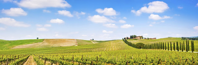Turistas conferem a Espírito Santo do Pinhal o título de 'Toscana Brasileira'