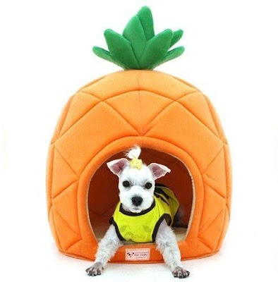 Pineapple Shaped Dog House