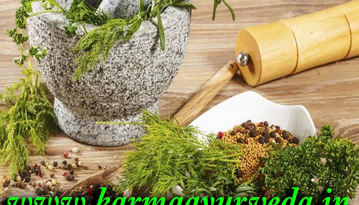 Creatinine treatment in Ayurveda