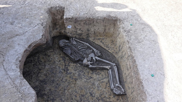 Bronze Age burial of 'shaman' discovered in Slovakia