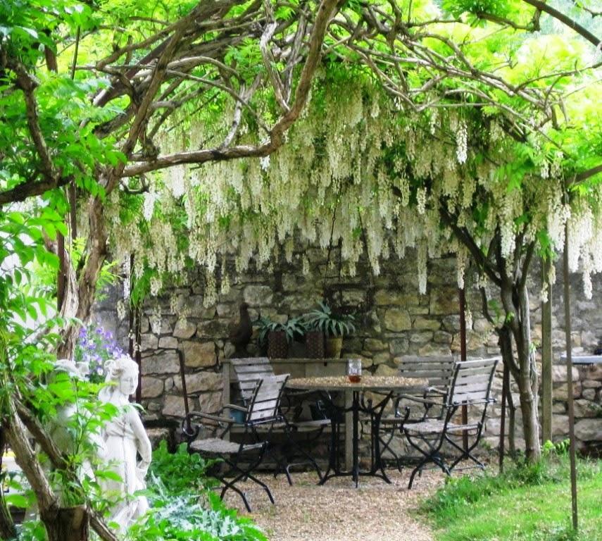 Mediterranean Style Garden Design Ideas: The Garden At Possum Creek: Mediterranean Gardens