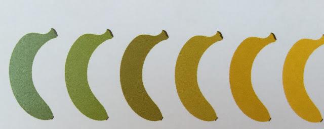 ¿Cómo Seleccionarlos?    Los plátanos pueden estar en los siguientes estados de maduración:        Se pueden encontrar en las tiendas y en el mercado desde verdes, amarillos con puntas verdes, amarillos, amarillos con algunas manchas cafés, hasta cafés.