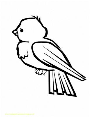 Gambar Mewarnai Burung - 6