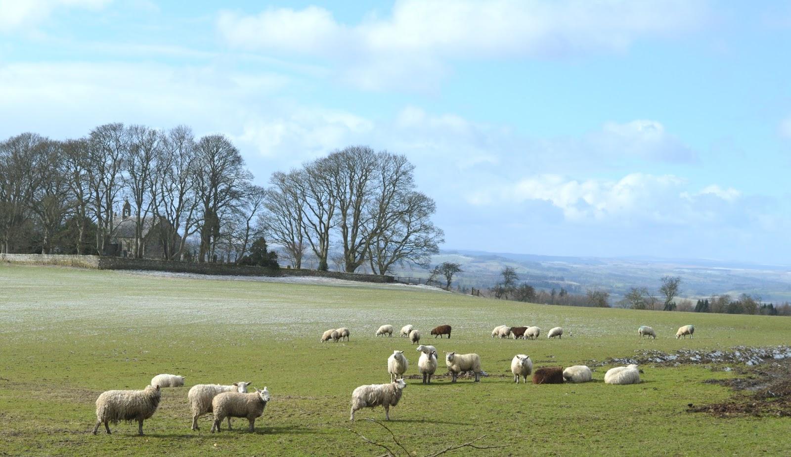 St Oswald's Farm Hexham