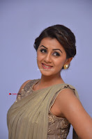 Nikki Galrani in Saree 085.JPG