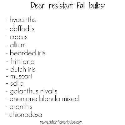 Order deer resistant Fall bulbs!