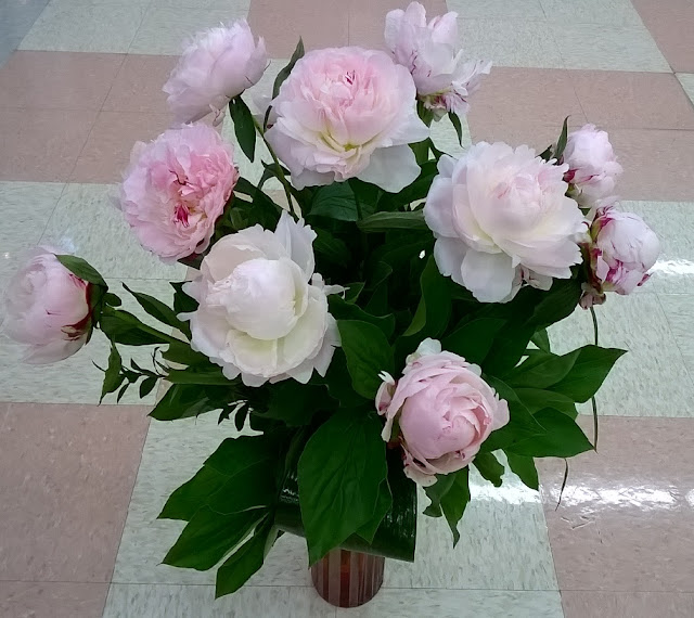 Get beautiful peonies.