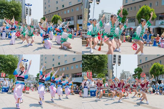 葵新連、熊本地震被災地救援募金チャリティ阿波踊りの記事のカバー写真