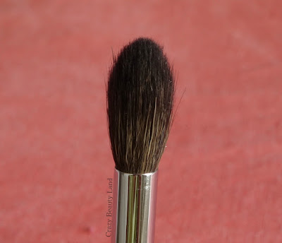Zoeva 228 Luxe Crease Brush Review Price Availability in India