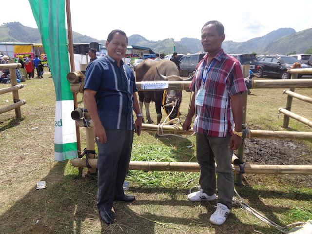 Prestasi Berturut-Turut di Expo Ternak, Aceh Singkil Siap Kembangkan Program IB