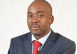 Tsvangirai appoints Chamisa MDC-T acting president