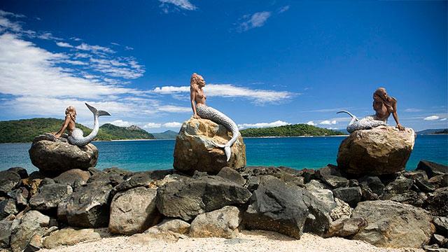 daydream island,island,daydream,daydream island (geographical feature),daydream island (island),daydrem island,daydream island snakes,queensland,daydream island kangaroo,daydream island australia,daydream island resort & spa,whitsunday islands (location),daydream island resort and spa,snake kangaroo daydream island whitsunday,snake up leg daydream island whitsundays qld,day dream island,australia,haymen island