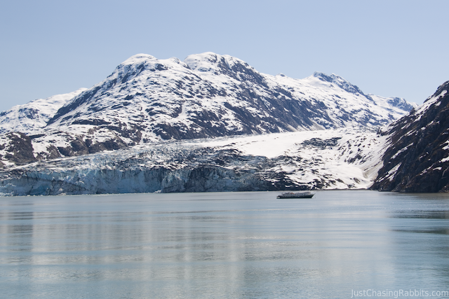 Cruising near the Lamplugh Glacier in Glacier Bay