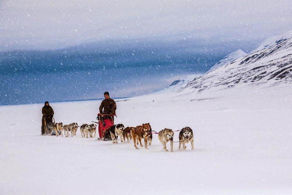 kolayyolculuk-svalbard-norveç
