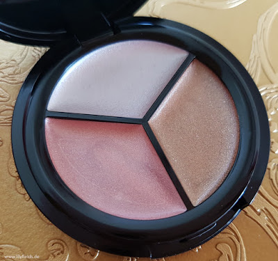 ModelCo - Highlighting Trio