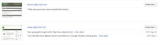 Google Webmasters_Crawler Error2