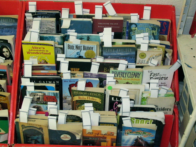 Classroom Library Checkout System \u003c!--Can\u0027t find substitution for - checkout a book