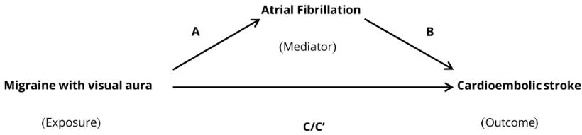 図:前兆つき片頭痛と心房細動 脳梗塞との関係