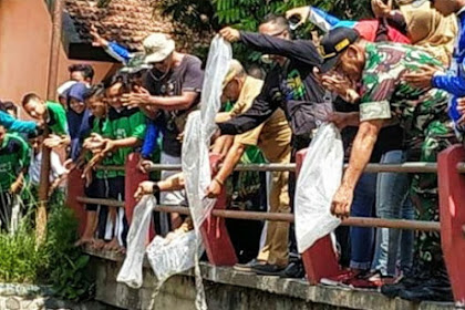 Lestarikan Lingkungan, Relawan Tebar Puluhan Ribu Bibit Ikan di Sungai Balung