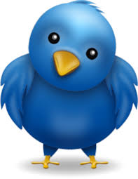 Cara Membuat Floating Bird Twitter pada Blog
