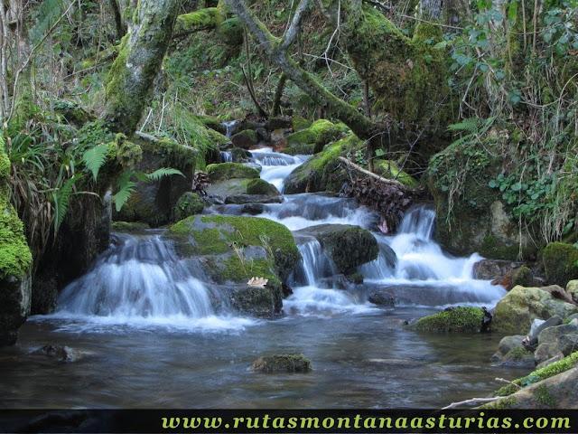 Agua corriendo río Nozalín