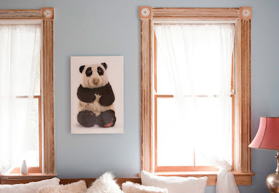 photo of old stuffed panda bear, hanging on the wall