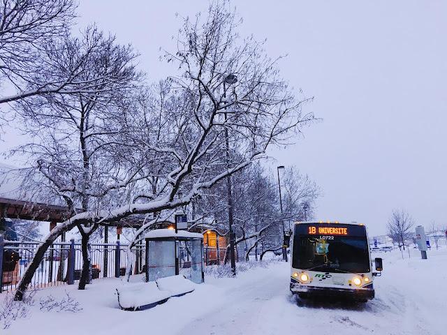 Québec City's Gare du Palais bus