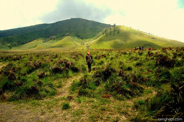 Savana dan Bukit Teletubbies, Kawasan Gunung Bromo