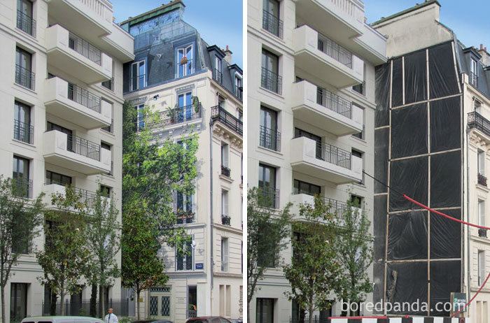 10+ Incredible Before & After Street Art Transformations That'll Make You Say Wow - L'arbre Aux Oiseaux, Levallois, France