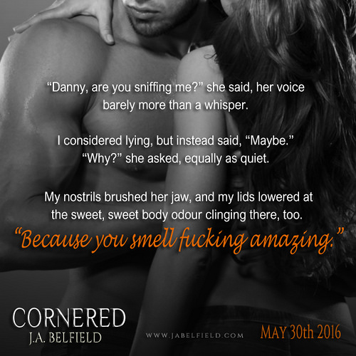 Teaser Picture Cornered 2