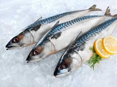 Nhận biết, phân biệt cá biển đông lạnh từ cá tươi hay cá chết